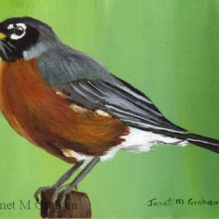 Art: American Robin ACEO by Artist Janet M Graham