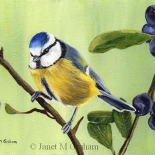 Art: Blue Tit by Artist Janet M Graham
