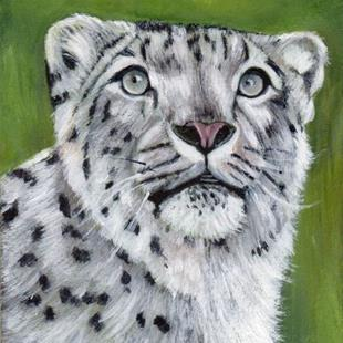 Art: Snow Leopard ACEO by Artist Janet M Graham