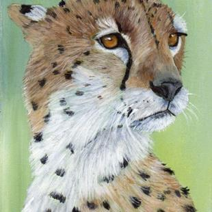 Art: Cheetah ACEO by Artist Janet M Graham