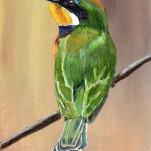Art: Blue Breasted Bee Eater ACEO by Artist Janet M Graham