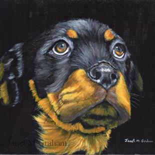 Art: Rottweiler Puppy ( Rocky) by Artist Janet M Graham