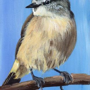 Art: Yellow Rumped Thornbill ACEO by Artist Janet M Graham