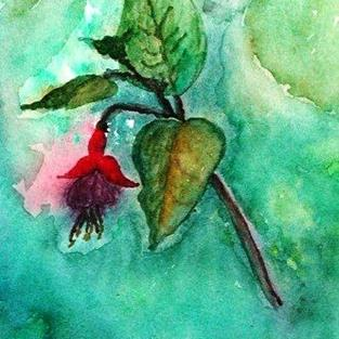 Art: Fushia in the Rain - sold by Artist Shari Lynn Schmidt