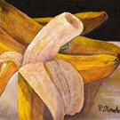 Art: Going Bananas, A Peeling Fruit by Artist Penny StewArt