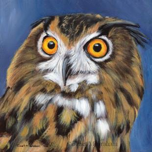 Art: Owl by Artist Janet M Graham