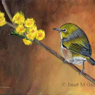 Art: Silvereye by Artist Janet M Graham