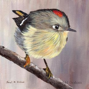 Art: Ruby Crowned Kinglet by Artist Janet M Graham