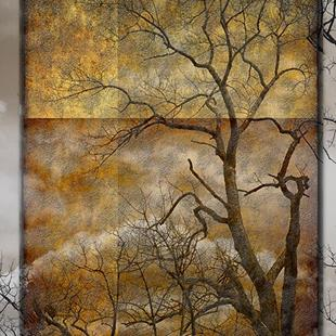 Art: Brown Study with Tree by Artist Carolyn Schiffhouer