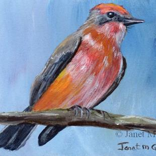 Art: Vermilion Flycatcher ACEO by Artist Janet M Graham