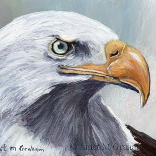 Art: Bald Eagle ACEO by Artist Janet M Graham