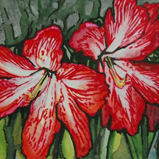 Art: Holiday Amaryllis by Artist Lindi Levison