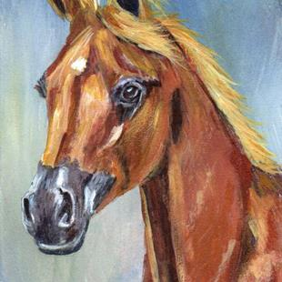 Art: Arabian Horse ACEO by Artist Janet M Graham