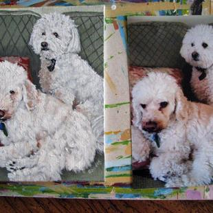 Art: Dogs by Artist Tabatha  Rhodes