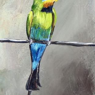 Art: Rainbow Bee eater ACEO by Artist Janet M Graham