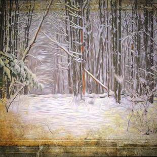 Art: Winter View by Artist Carolyn Schiffhouer