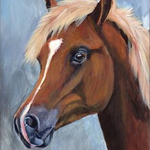Art: Arabian Colt by Artist Janet M Graham