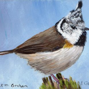 Art: Crested Tit ACEO by Artist Janet M Graham