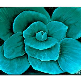 Art: TURQUOISE ROSE by Artist Kate Challinor