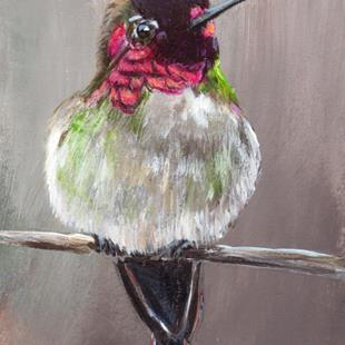 Art: Anna's Hummingbird ACEO by Artist Janet M Graham