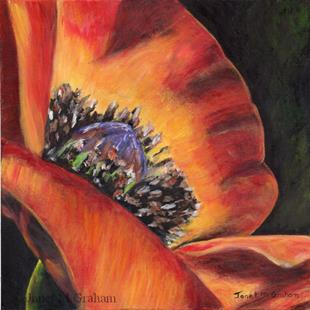 Art: Poppy 2 by Artist Janet M Graham
