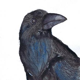 Art: CROW b110 600 sm by Artist Dawn Barker