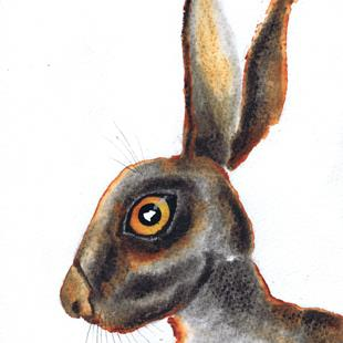 Art: BROWN HARE h3038 by Artist Dawn Barker