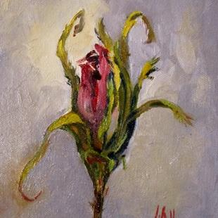 Art: Rose Bud No.2 by Artist Delilah Smith