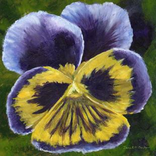 Art: Pansy by Artist Janet M Graham