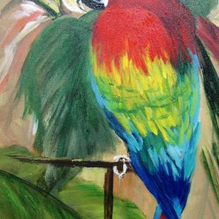 Art: Red Macaw Parrot by Artist Barbara Haviland