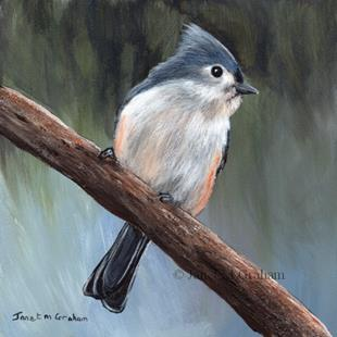 Art: Tufted Titmouse No 4 by Artist Janet M Graham