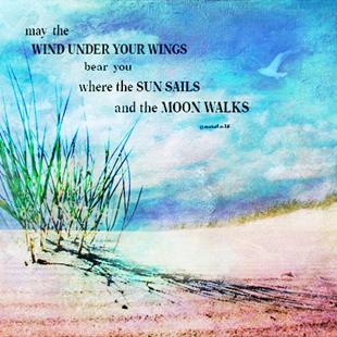Art: May The Wind by Artist Carolyn Schiffhouer