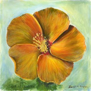 Art: Hibiscus by Artist Janet M Graham