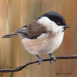 Art: Marsh Tit by Artist Janet M Graham