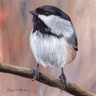 Art: Black Capped Chickadee No 3 by Artist Janet M Graham