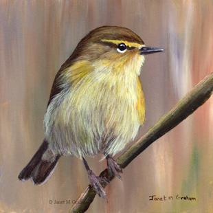 Art: Common Chiffchaff by Artist Janet M Graham