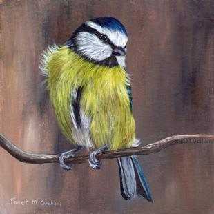 Art: Blue Tit No 4 by Artist Janet M Graham