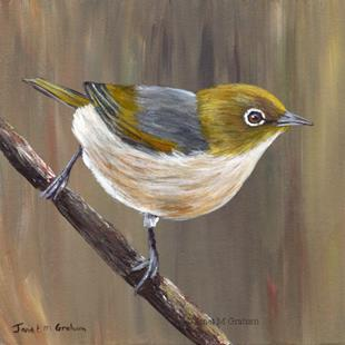 Art: Silvereye No 2 by Artist Janet M Graham