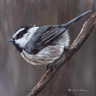 Art: Mountain Chickadee by Artist Janet M Graham