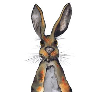 Art: HARE h3303 by Artist Dawn Barker