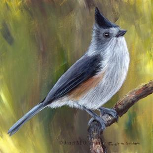 Art: Black Crested Titmouse by Artist Janet M Graham
