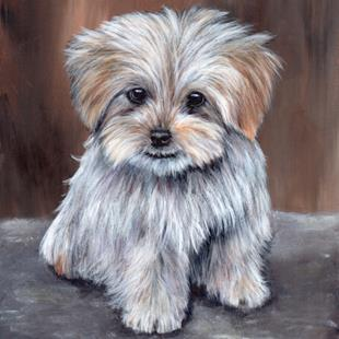 Art: Maltese Pup by Artist Janet M Graham