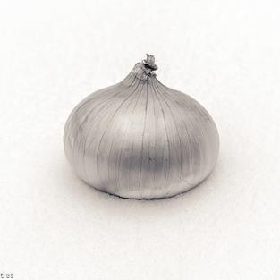 Art: Snow Onion 10.5 x 13.5  (01/05) by Artist Todd Suttles