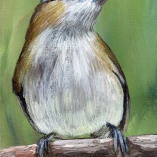 Art: Red Eyed Vireo ACEO by Artist Janet M Graham