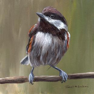 Art: Chestnut Backed Chickadee No 3 by Artist Janet M Graham