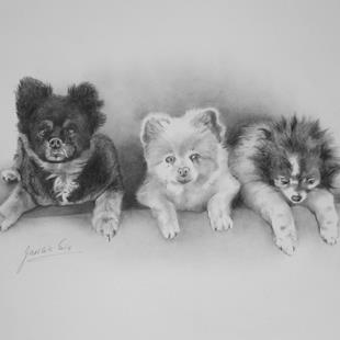 Art: Three Dogs by Artist Ewa Kienko Gawlik