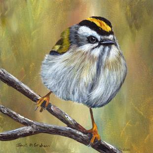 Art: Golden Crowned Kinglet No 2 by Artist Janet M Graham