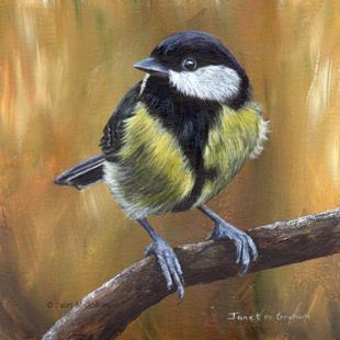 Art: Great Tit No 2 by Artist Janet M Graham