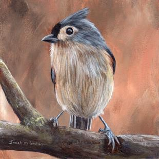 Art: Tufted Titmouse No 9 by Artist Janet M Graham