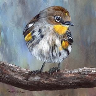 Art: Yellow Rumped Warbler No 2 by Artist Janet M Graham